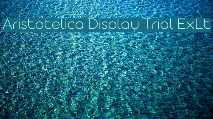 Aristotelica Display Trial ExLt Font examples