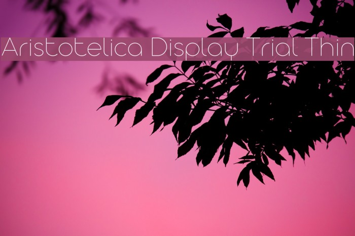 Aristotelica Display Trial Thin Schriftart examples
