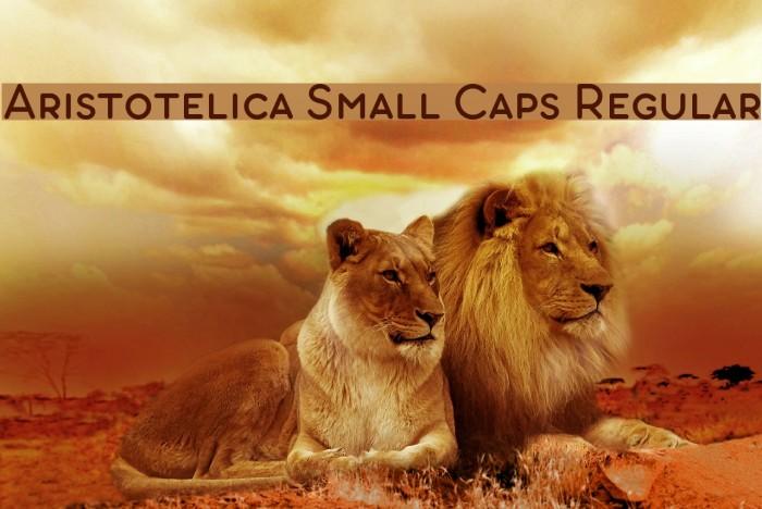 Aristotelica Small Caps Regular Font examples