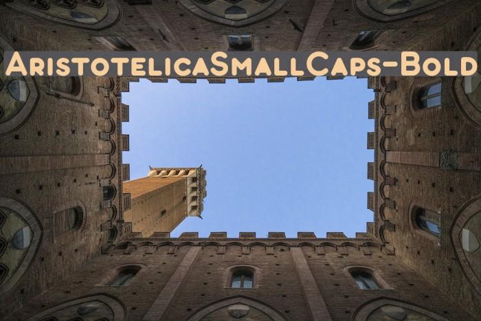 AristotelicaSmallCaps-Bold Schriftart examples