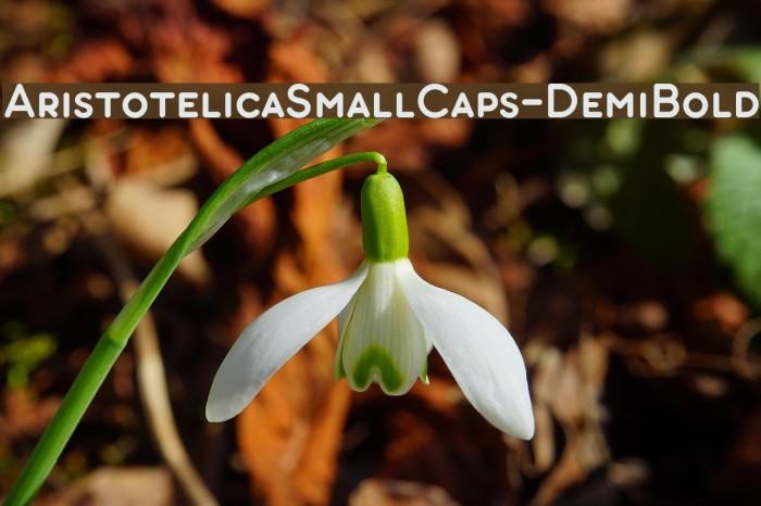 AristotelicaSmallCaps-DemiBold Schriftart examples