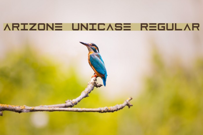 Arizone Unicase Regular Fonte examples