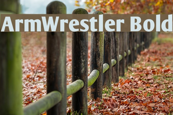 ArmWrestler Bold Font examples