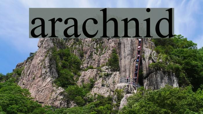 arachnid Шрифта examples