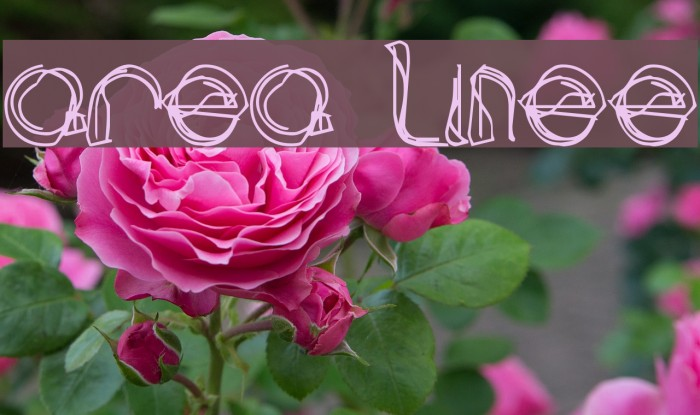 area LINEe Font examples