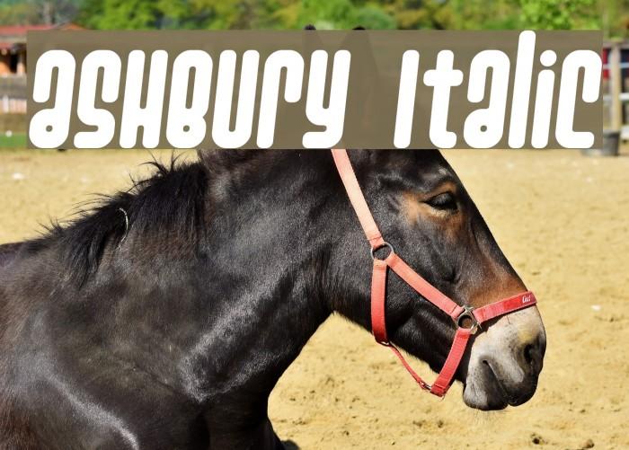 Ashbury Italic Font examples