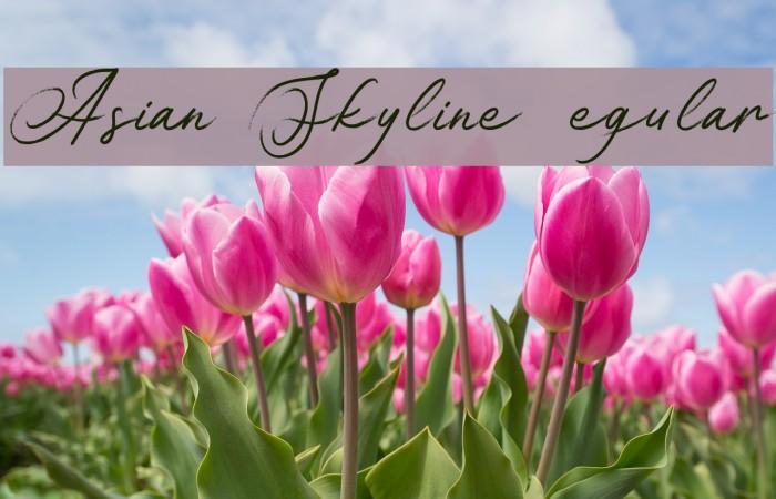 Asian Skyline DEMO Regular Fonte examples
