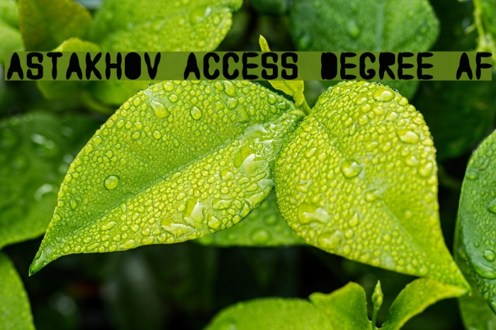 Astakhov Access Degree AF Font examples