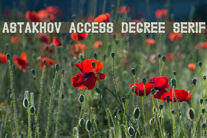 Astakhov Access Degree Serif Font examples