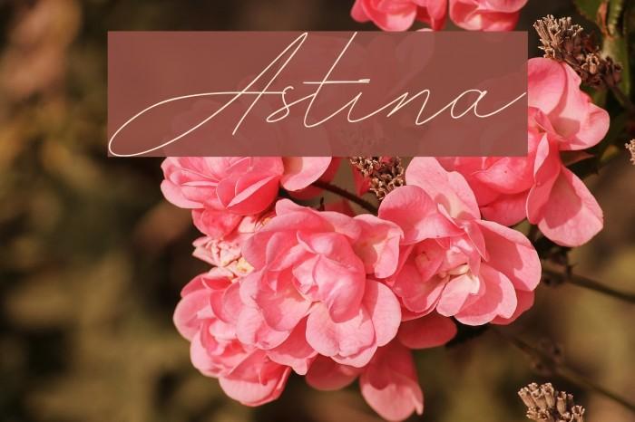 Astina Fonte examples