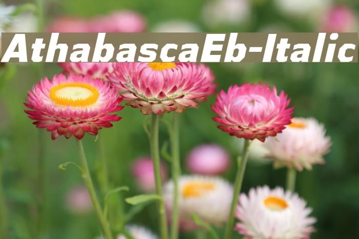 AthabascaEb-Italic Font examples