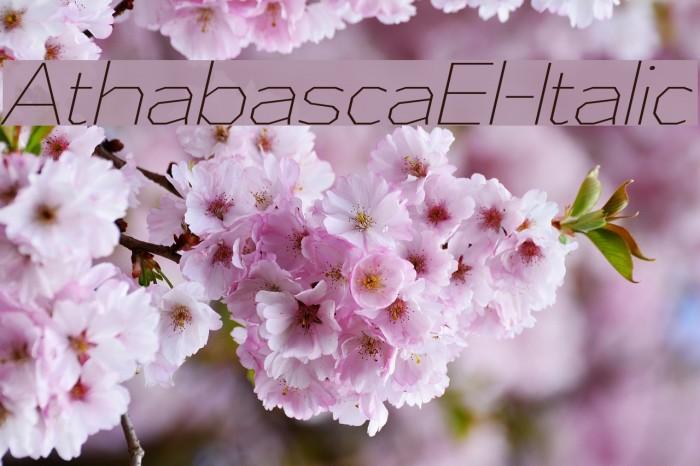 AthabascaEl-Italic Font examples
