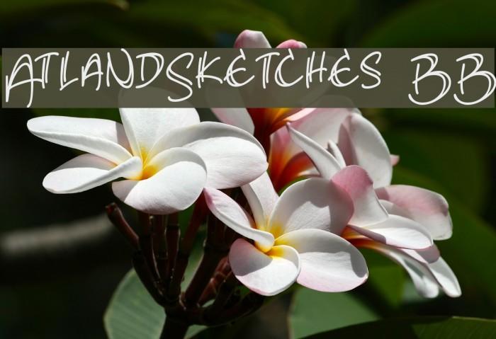 AtlandSketches BB Font examples