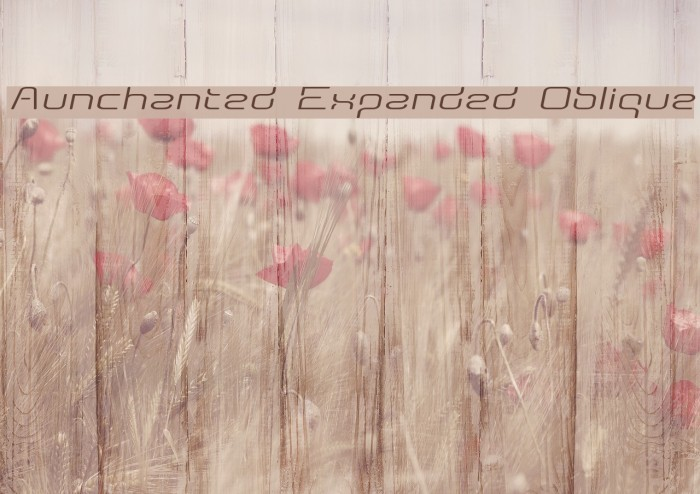 Aunchanted Expanded Oblique Fonte examples