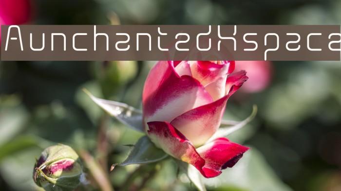 AunchantedXspace Fonte examples