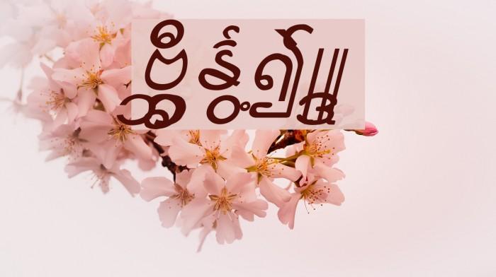 Aung San Burma Fonte examples