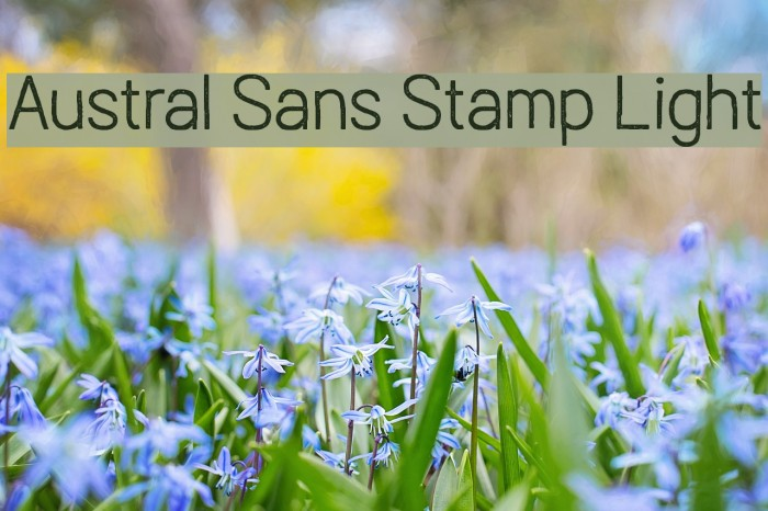 Austral Sans Stamp Light Шрифта examples