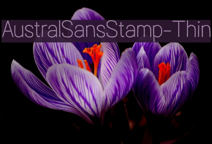 AustralSansStamp-Thin Caratteri examples