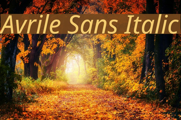 Avrile Sans Italic Schriftart examples