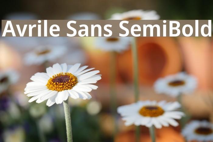 Avrile Sans SemiBold Schriftart examples