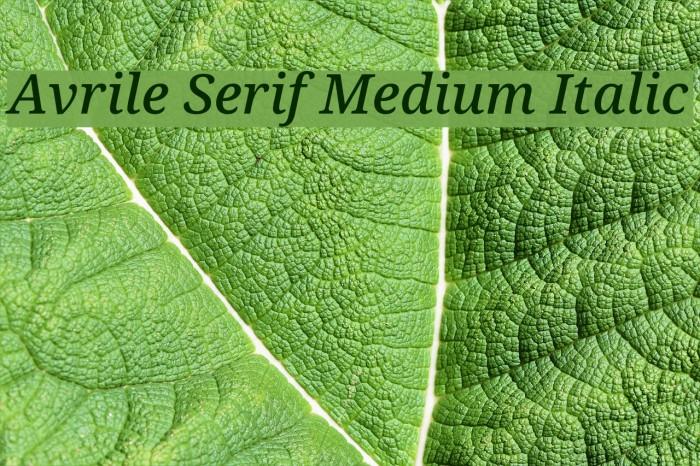 Avrile Serif Medium Italic Schriftart examples