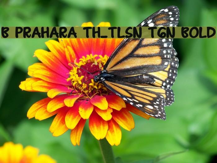 B Prahara TH_Tlsn Tgn Bold फ़ॉन्ट examples