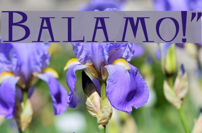 Balsamo!` Fonte examples