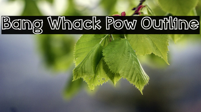 Bang Whack Pow Outline Fonte examples