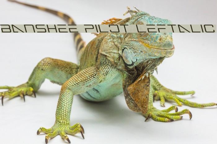 Banshee Pilot Leftalic फ़ॉन्ट examples