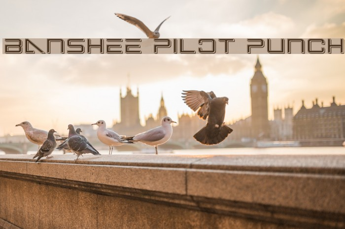 Banshee Pilot Punch फ़ॉन्ट examples
