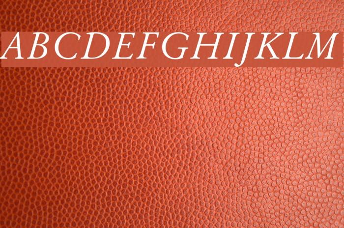 Baramond Italic Font examples