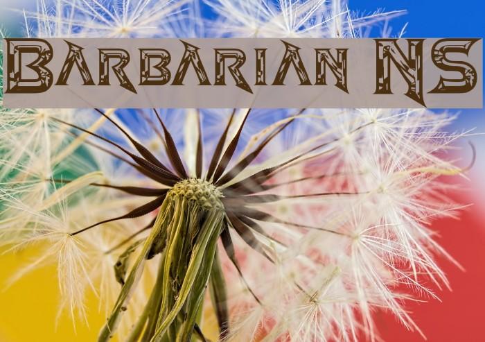 Barbarian NS Fonte examples