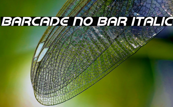 Barcade No Bar Italic フォント examples