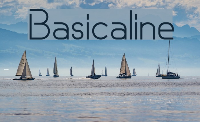 Basicaline Polices examples
