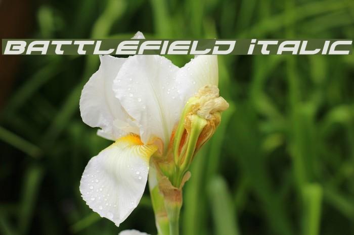 Battlefield Italic Fonte examples