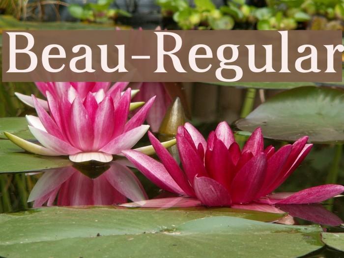 Beau-Regular Font examples