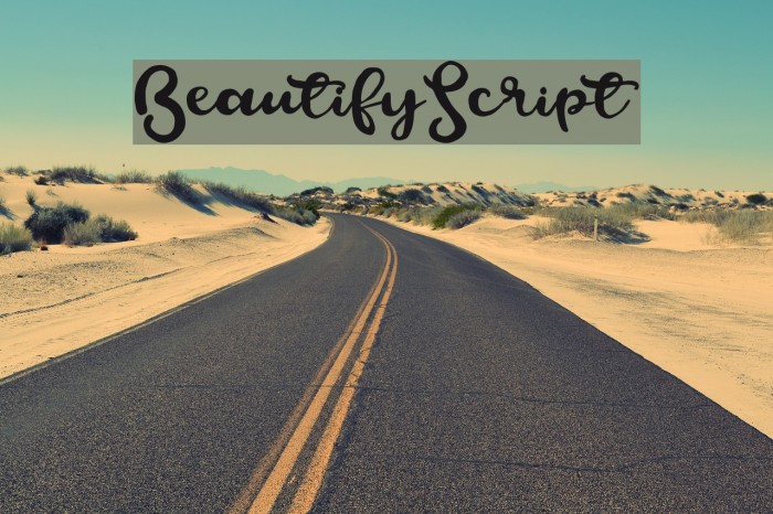 BeautifyScript フォント examples