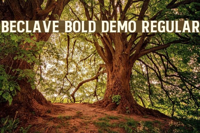 Beclave Bold DEMO Regular Fonte examples
