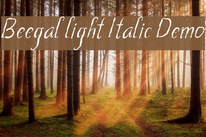 Beegal light Italic Demo Schriftart examples