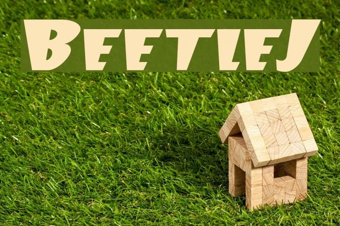 BeetleJ Шрифта examples