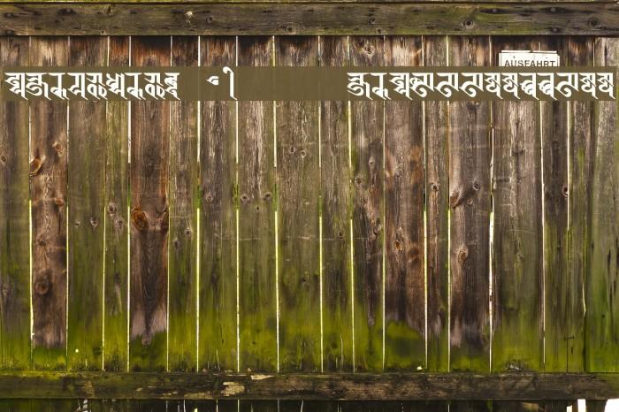 BISHOWSON2  Ranjana Lipi        ISBN9993355933 Font examples