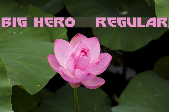 Big Hero 6  Regular Font examples