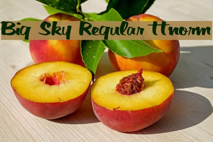 Big Sky Regular ttnorm Fonte examples