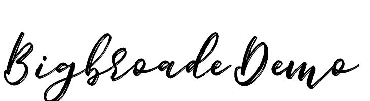 Bigbroade Demo  Free Fonts Download