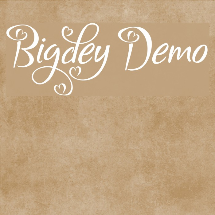 Bigdey Demo フォント examples