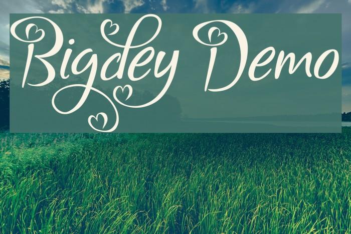 Bigdey Demo Font examples