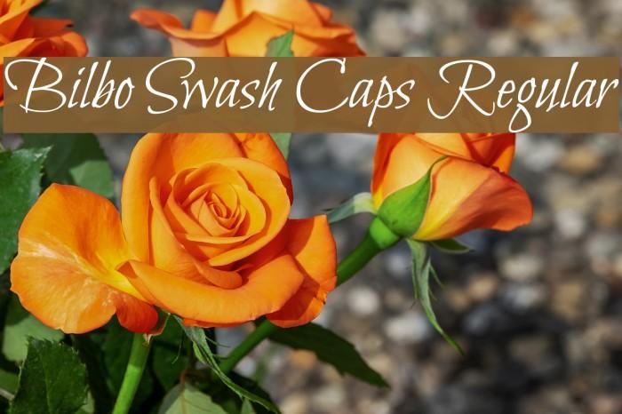 Bilbo Swash Caps Regular Font examples