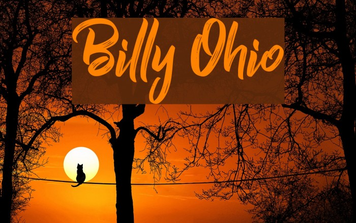Billy Ohio Schriftart examples