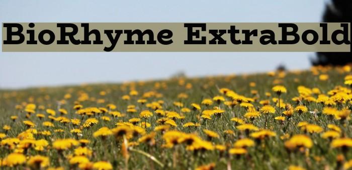 BioRhyme ExtraBold Font examples