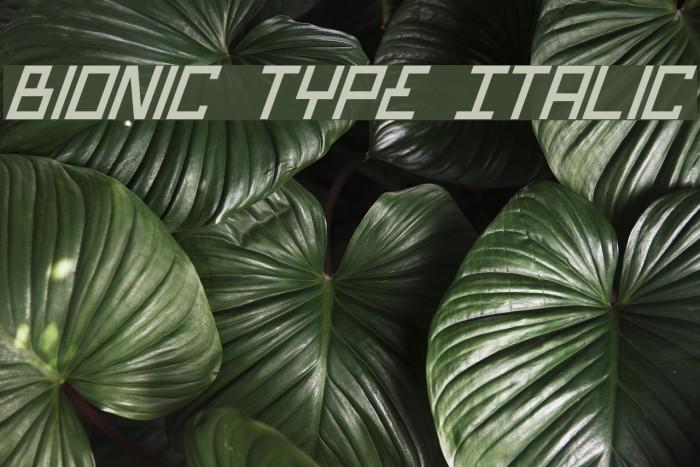 Bionic Type Italic Шрифта examples
